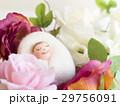 花に囲まれて眠る赤ちゃん(羊毛人形) 29756091