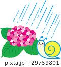 紫陽花 梅雨 雨のイラスト 29759801