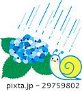 紫陽花 梅雨 雨のイラスト 29759802