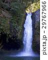 浄蓮の滝 29767966