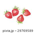 苺 イチゴ 29769589
