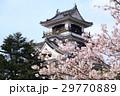 高知城天守閣と桜 29770889
