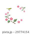 鳥 小鳥 メジロのイラスト 29774154