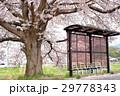 春のバス停 1 29778343