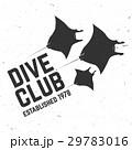 Scuba diving club. Vector illustration. 29783016