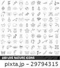 100 100 天然のイラスト 29794315
