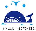 クジラ 潮吹き 白バックのイラスト 29794833