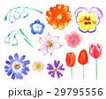 花 手描き 水彩画のイラスト 29795556