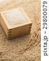 米 白米 升の写真 29800079