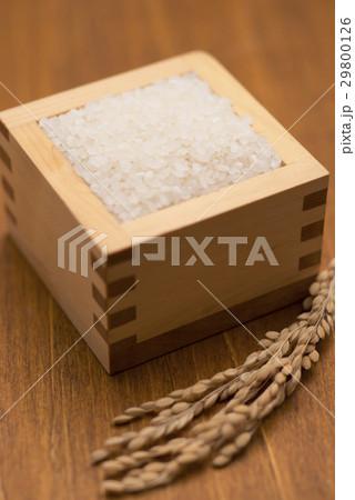 白米と稲穂の写真素材 [29800126] - PIXTA
