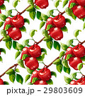 Red apples seamless pattern 29803609