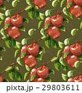 Vintage apples seamless pattern 29803611
