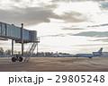 飛行機 フライト 飛行の写真 29805248