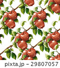 Vintage Red apples seamless pattern 29807057