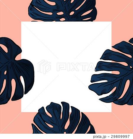 Exotic flowers set. Botanical vector vintageのイラスト素材 [29809997] - PIXTA