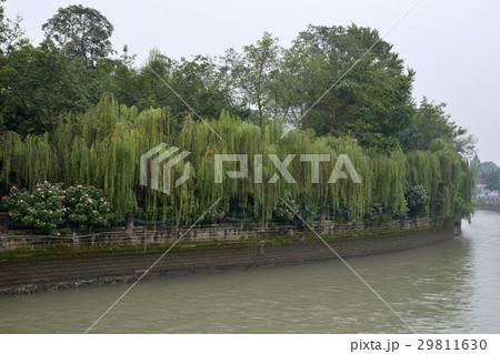 成都の街並み(中国四川省) 29811630