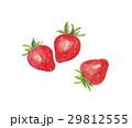 苺 いちご 29812555