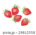 苺 果実 果物のイラスト 29812558