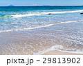 《静岡県》伊豆・白浜海岸の美しいビーチ 29813902