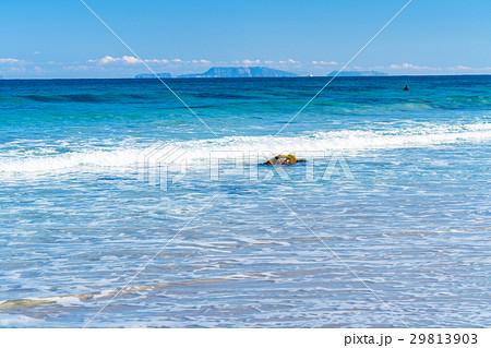 《静岡県》伊豆・白浜海岸の美しいビーチ 29813903