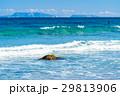 白浜海岸 海 波の写真 29813906