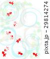 金魚 和風 水のイラスト 29814274