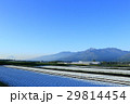 畑 農地 山並みの写真 29814454