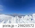 山形蔵王_快晴と樹氷群 29820572
