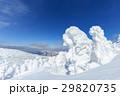 山形蔵王_快晴と樹氷群 29820735