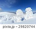 山形蔵王_快晴と樹氷群 29820744