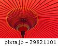 和傘 傘 雨傘の写真 29821101