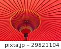 和傘 傘 雨傘の写真 29821104