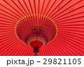 和傘 傘 雨傘の写真 29821105