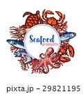 シーフード 海の幸 魚介類のイラスト 29821195