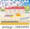桜の木と幼稚園・保育園の風景 29826935