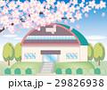 桜の木と体育館の風景 29826938