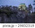 名古屋城 桜 夜景 29832319