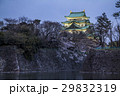 城 天守閣 名古屋城の写真 29832319