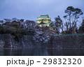 名古屋城 桜 夜景 29832320