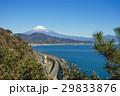 薩埵峠 富士山 東名高速道路の写真 29833876