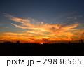 秋の夕焼け 4 29836565