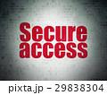 セキュリティ セキュリティー 安全のイラスト 29838304