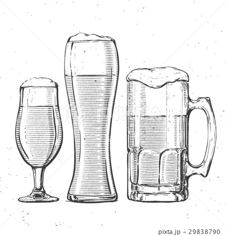 beer glasses on whiteのイラスト素材 [29838790] - PIXTA