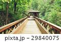 wooden bridge landscape 29840075
