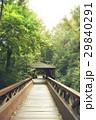 wooden bridge 29840291