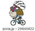 ロードバイクに乗るマントヒヒ 29840822