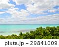 宮古島 海 リゾートの写真 29841009