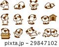 犬 バリエーション ベクターのイラスト 29847102