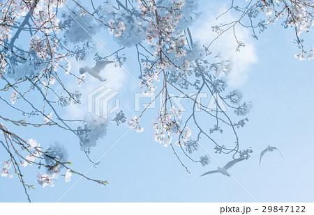 青空 希望 新生活 イメージ 29847122