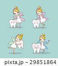 tooth with fairy 29851864